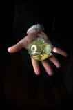 Crystal Ball Hands Tree Royalty Free Stock Photos