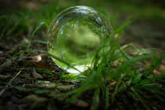 Crystal Ball Nature immagini stock