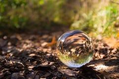 Crystal Ball Nature fotografia stock libera da diritti