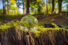 Crystal Ball Nature Royalty Free Stock Photos
