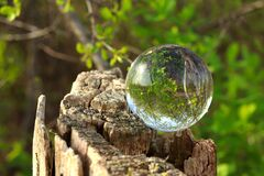 A crystal ball for optical illusion. Nature view through a crystal ball