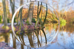 Crystal ball reflecting autumn forest with tree trunks. Glass sphere reflects fall forest with tree trunks mirror image in water of pond royalty free stock images