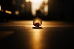 Crystal Ball sur le lever de soleil d'horizon de place de paysage urbain Photos libres de droits
