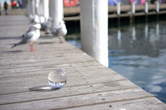 Crystal ball view of Darling Harbour, Sydney Royalty Free Stock Image