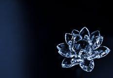 crystal blomma Arkivbilder