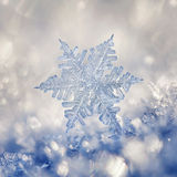 Crystal Blue Snowflake. Digital composite of snowflakes and frost Stock Images