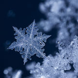 Crystal Blue Snowflake at night.jpg. Digital composite of snowflakes and frost Royalty Free Stock Photos