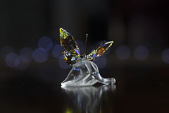 Crystal Butterfly Stock Images