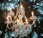 Crystal chandelier. Hanging from a tree for a wedding reception royalty free stock images