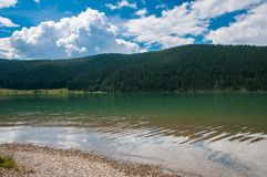 Crystal clean artificial lake near pine forest in Romania Royalty Free Stock Photography
