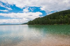 Crystal clean artificial lake near pine forest in Romania Royalty Free Stock Photo