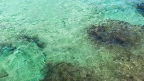 Crystal clear sea shore coral and rock panning footage stock video footage