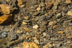 Crystal Clear Creek com Rocky Bottom Foto de Stock Royalty Free
