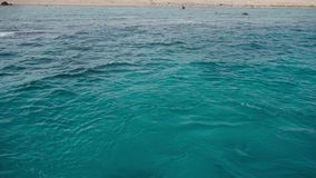 Crystal clear deep water of the red sea and the deserted shore of the island. Panorama.  stock video