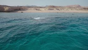 Crystal clear deep water of the red sea and the deserted shore of the island. Panorama. Crystal clear deep water of the red sea and the deserted shore of the stock video footage