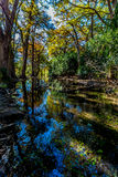 The Crystal Clear Frio River in the Fall. Stock Images