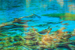 Crystal clear lake in jiuzhaigou Royalty Free Stock Images