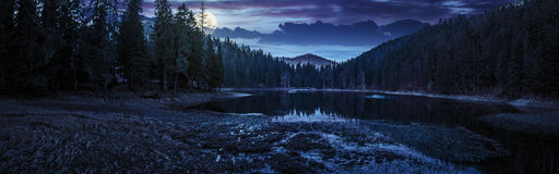 Crystal clear lake near the pine forest in  mountains at night. View on crystal clear lake with grassy shore near the pine forest at the foot of the  mountain at Royalty Free Stock Images