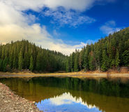 Crystal clear lake near the pine forest in  mountains at sunrise Stock Photo