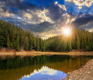 Crystal clear lake near the pine forest in  mountains at sunset Royalty Free Stock Photography