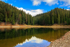 Crystal clear lake near the pine forest in  mountains Stock Photos