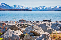 Crystal Clear Lake Pukaki. Mount Cook Mountain Range is in view on the other side of Lake Pukaki on a beautiful spring day Royalty Free Stock Photos