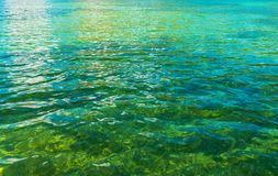 Crystal Clear Lake Water. Closeup Photo. Nature Background Photo stock images