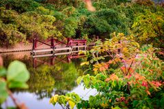 Crystal clear river in fall or autumn with red, yellow and orange leaves around. royalty free stock images