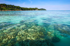 Crystal clear sea at tropical island Stock Images
