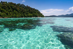 Crystal clear sea at tropical island Stock Photos