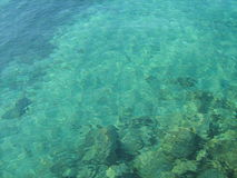 Crystal clear sea water Stock Images