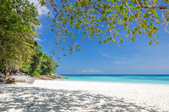 Crystal clear sea and white sand beach Royalty Free Stock Photos