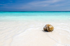 Crystal clear sea and white sand beach Stock Images