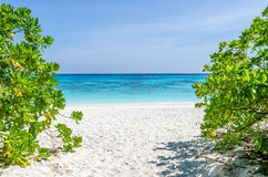 Crystal clear sea and white sand beach Stock Photography