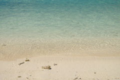 The crystal clear and shallow waters on the islands of the tropical Dry tortugas with coral beaches and clean beautiful sand royalty free stock photos