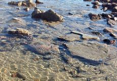 Crystal Clear Tides i Kalifornien Arkivbilder