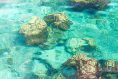 Crystal clear tropical sea Royalty Free Stock Images