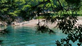 Crystal Clear Turquoise Sea em uma baía quieta video estoque