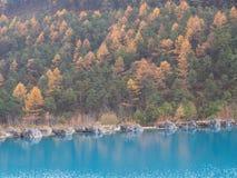 Crystal Clear Water auf dem Weg zu Jade Dragon Snow Mountain Tra Lizenzfreies Stockbild