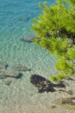 Crystal clear water beach Royalty Free Stock Image
