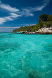 Crystal Clear Water Jungle Edge Stock Photo
