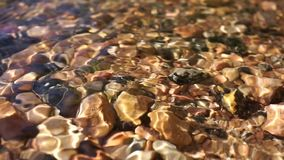 Crystal clear water in a mountain stones riverbed. Clear water in a mountain stones riverbed detail close up stock video