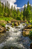 Crystal clear water from the mountains stock image