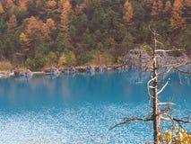 Crystal Clear Water op de manier aan Jade Dragon Snow Mountain Tra Royalty-vrije Stock Foto