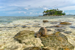 Crystal clear water of the tropical sea Royalty Free Stock Photos