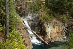 Crystal Clear Waterfall With Log im Wasser lizenzfreie stockfotografie