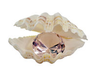 Crystal in a cockleshell. Crystal which is in a mollusc bowl Stock Image