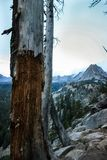 Crystal Crag Mountain Yosemite nationalpark, Kalifornien royaltyfri fotografi