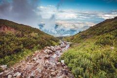 Crystal Creek in alte montagne di Tatra, Slovacchia Immagini Stock Libere da Diritti