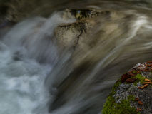 Crystal Creek Blur Royaltyfri Fotografi